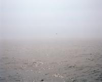 11-mile boat ride